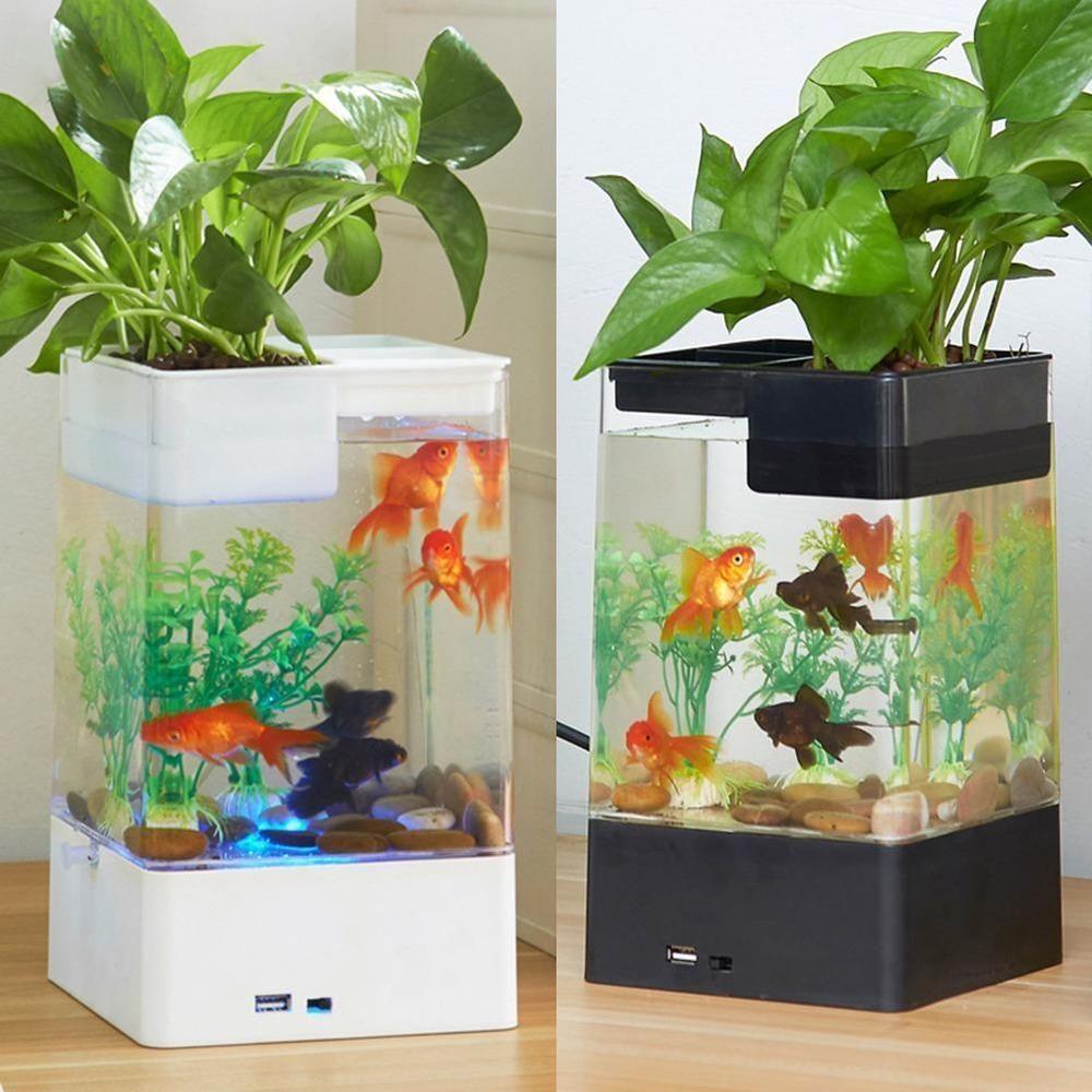Aquarium Autonettoyant Bureau Colore D39eclairage Demarreur Led Mini Mini Selbst Reinigung Desktop Fish Tank Aquar In 2020 Indoor Aquaponics Fish Tank Aquarium
