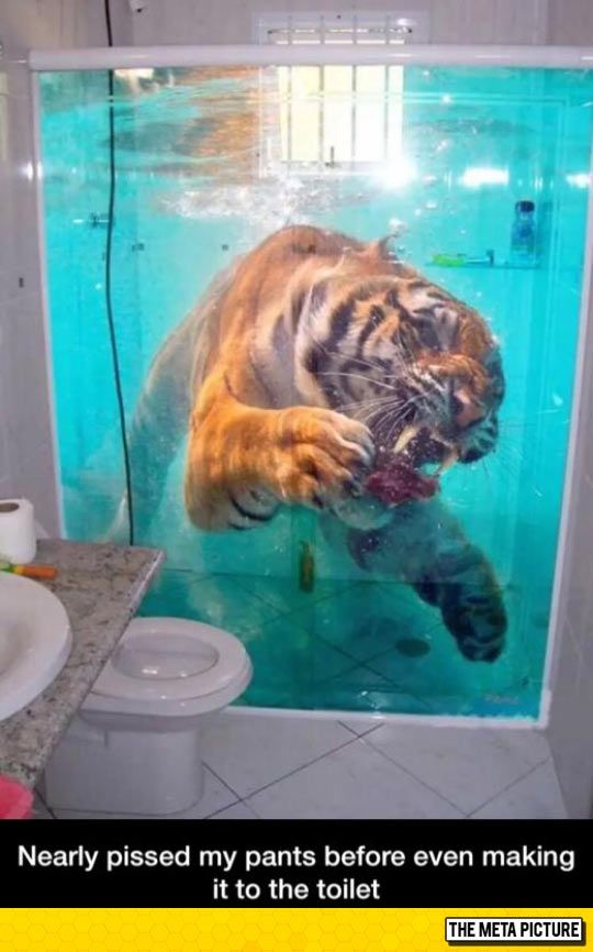 Looks Pretty Realistic Lustige Humor Bilder 3d Tapete Bodenbelag Fur Badezimmer