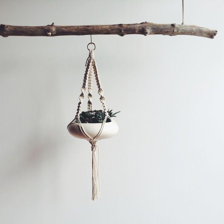 single_plant_hanger.JPG