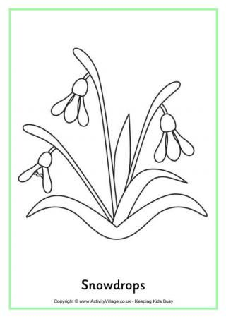 Snowdrops Spring Coloring Pages Coloring Pages Flower Drawing