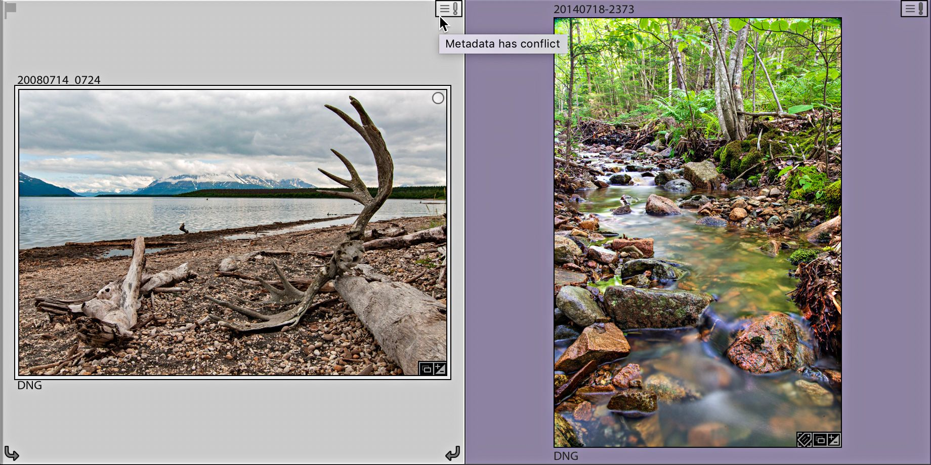Difference between collection and smart collection in lightroom