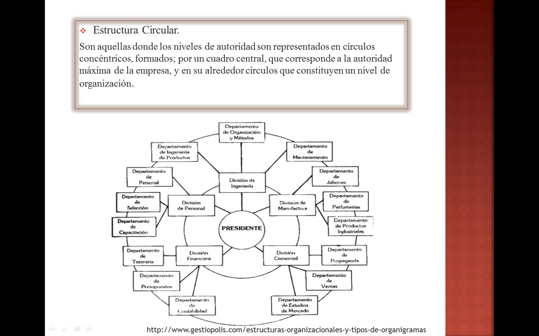 Tipos De Organigramas Estructura Circular Organigrama