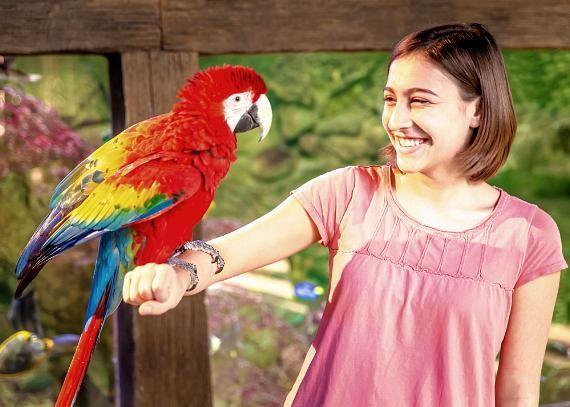 Girl With Exotic Bird At Seaquest Interactive Aquarium Las Vegas Valley Layton Utah Exotic