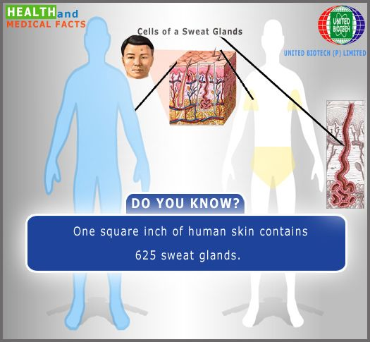 Pin On Amazing Health And Medical Facts