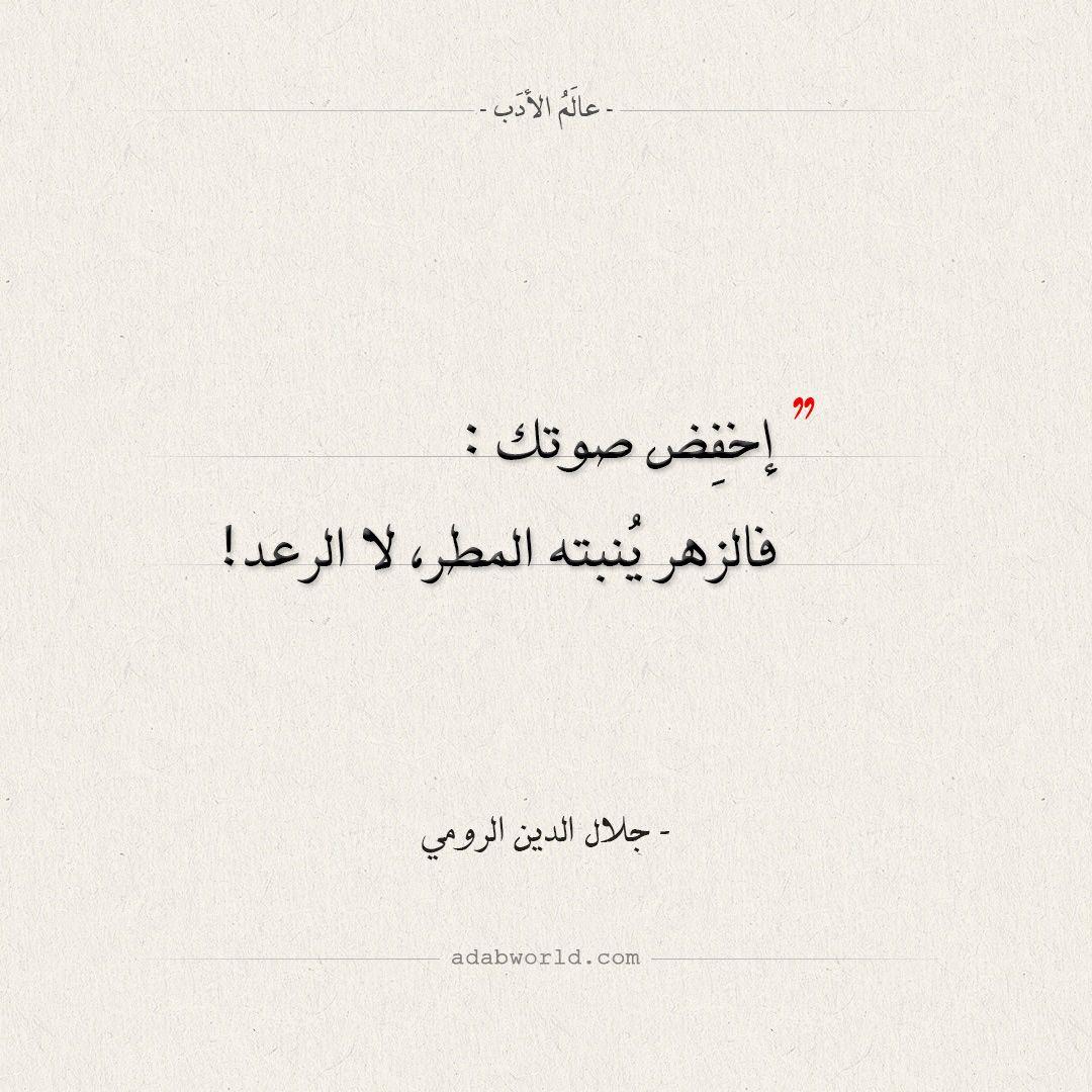 اقتباسات جلال الدين الرومي إخفض صوتك عالم الأدب Words Quotes Wisdom Quotes Life Wisdom Quotes