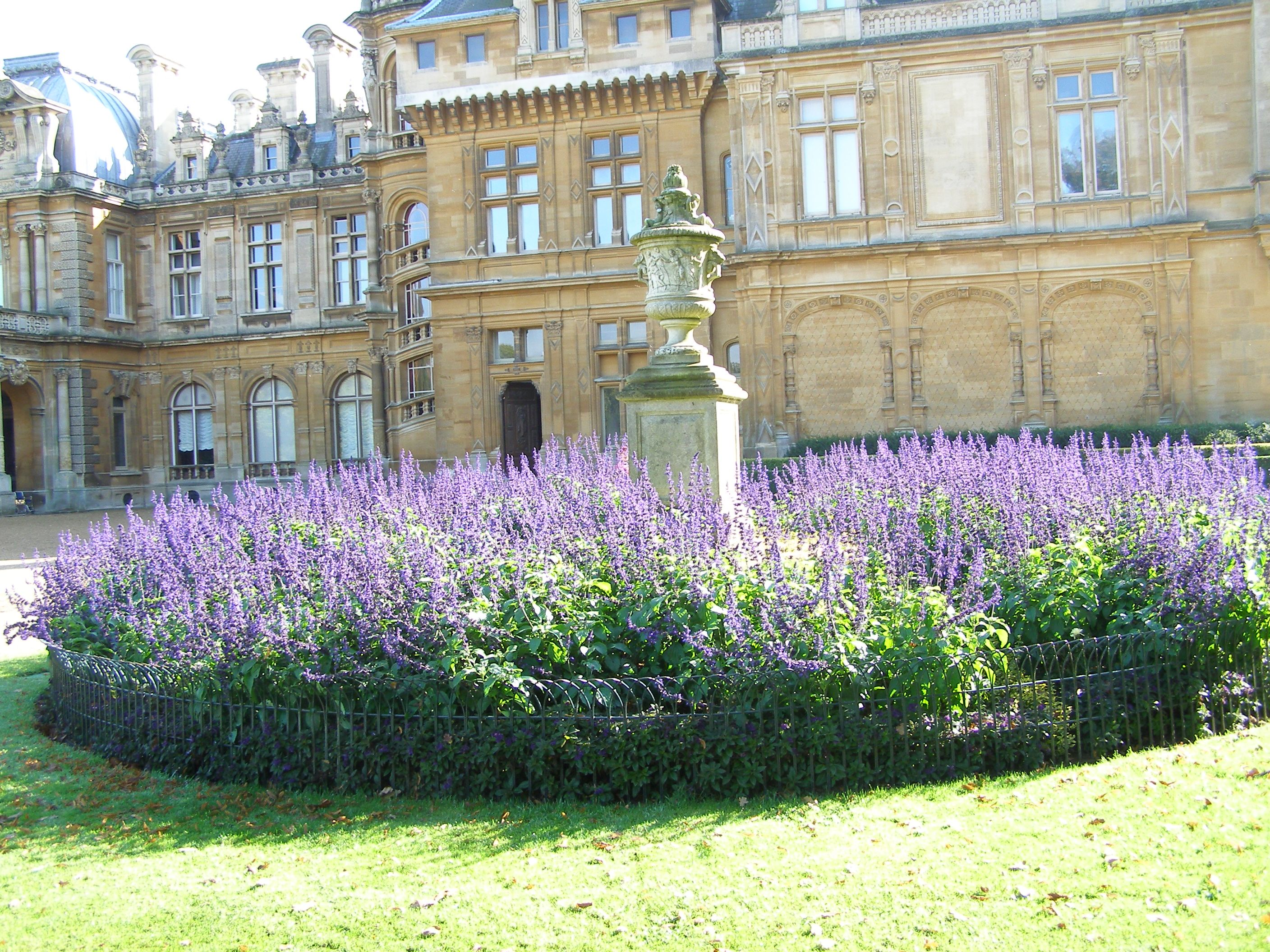 Waddesdon Manor Garden Some Features Of Victorian Gardens Flower Beds Shaped Potted Plants Stat Victorian Gardens Townhouse Garden Manor Garden