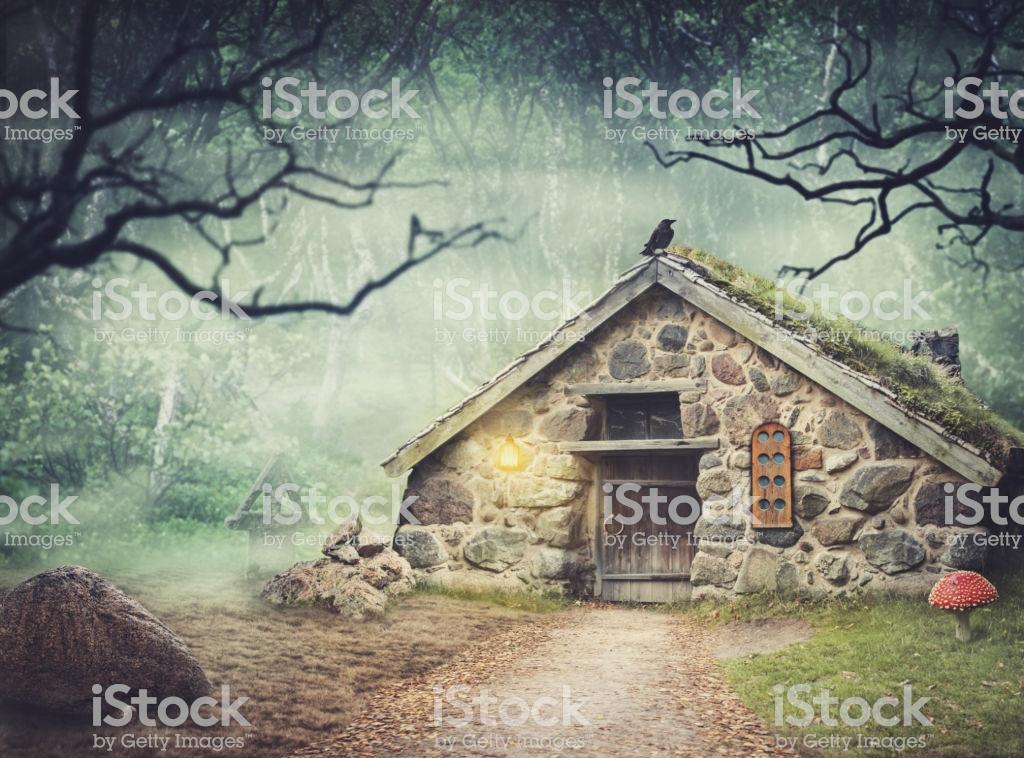 森の家 ファンタジー Google 検索 森の家 森 ファンタジー