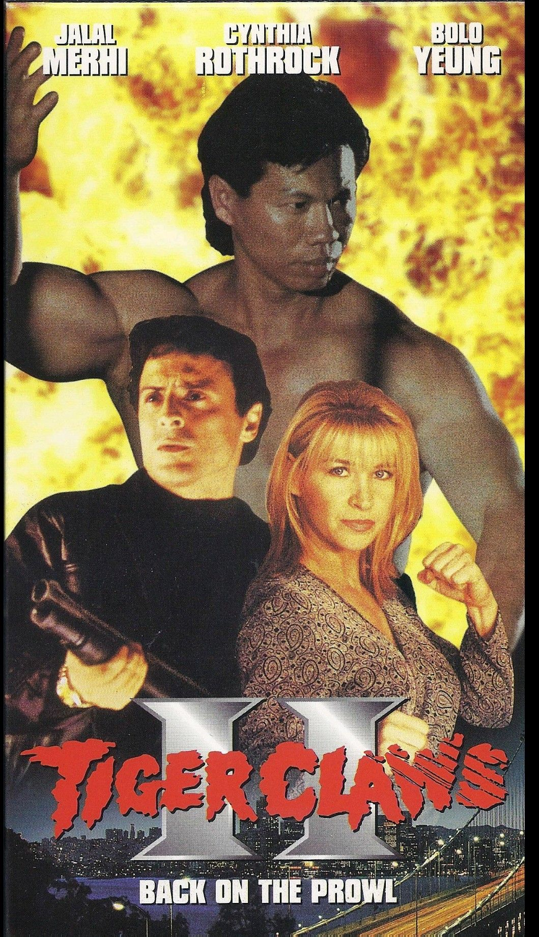 Cynthia Rothrock Bolo Yeung Tiger Claws Ii Cynthia Rothrock Movies Action Movie Poster Karate Movies