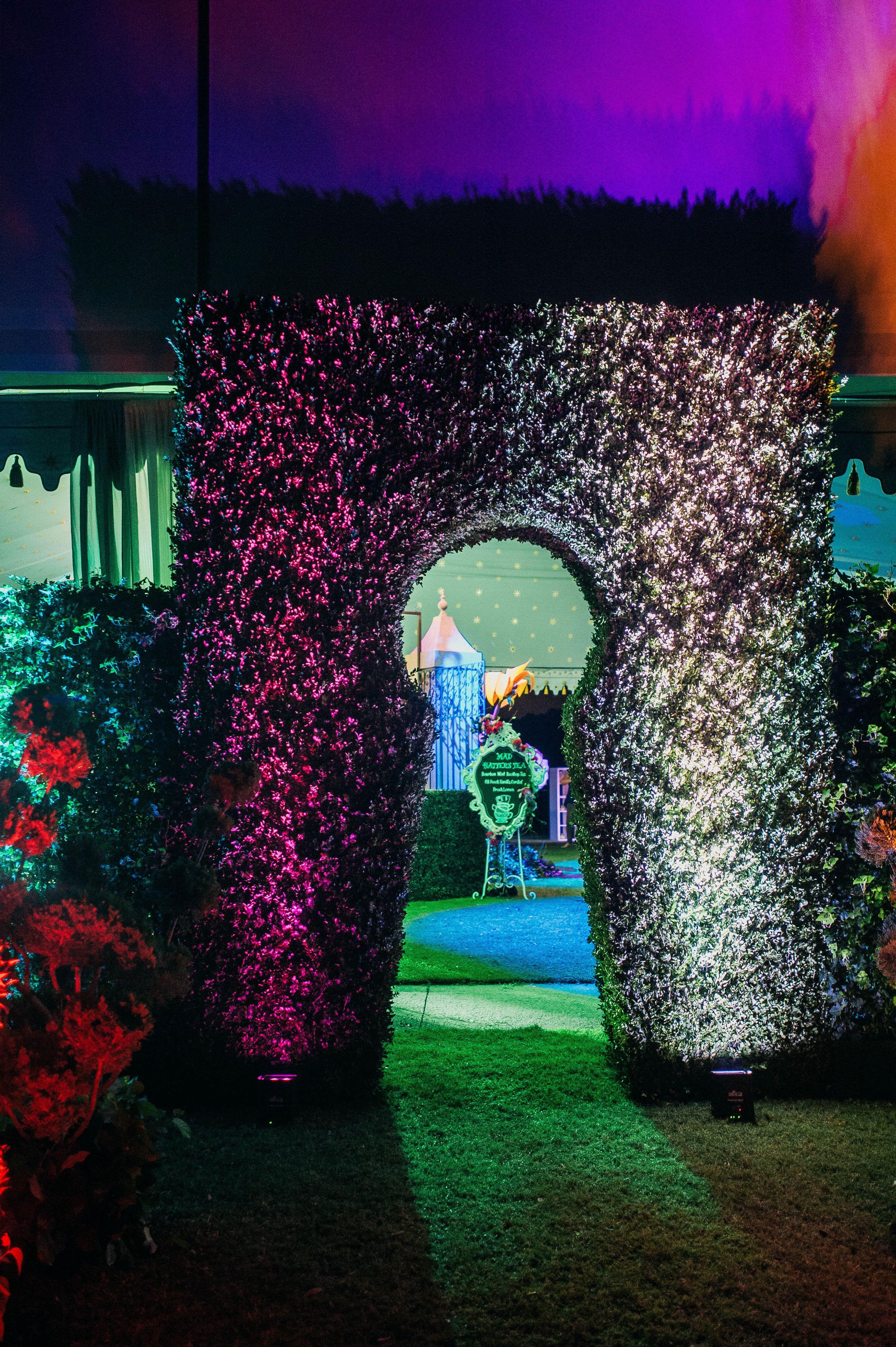 Alice In Wonderland Entrance Idea Alice In