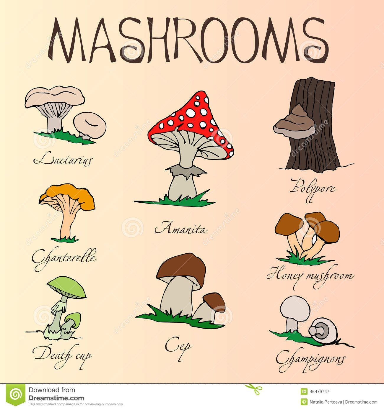 collection-cartoon-mushrooms-hand-drawing-edible-poisonous-names ...