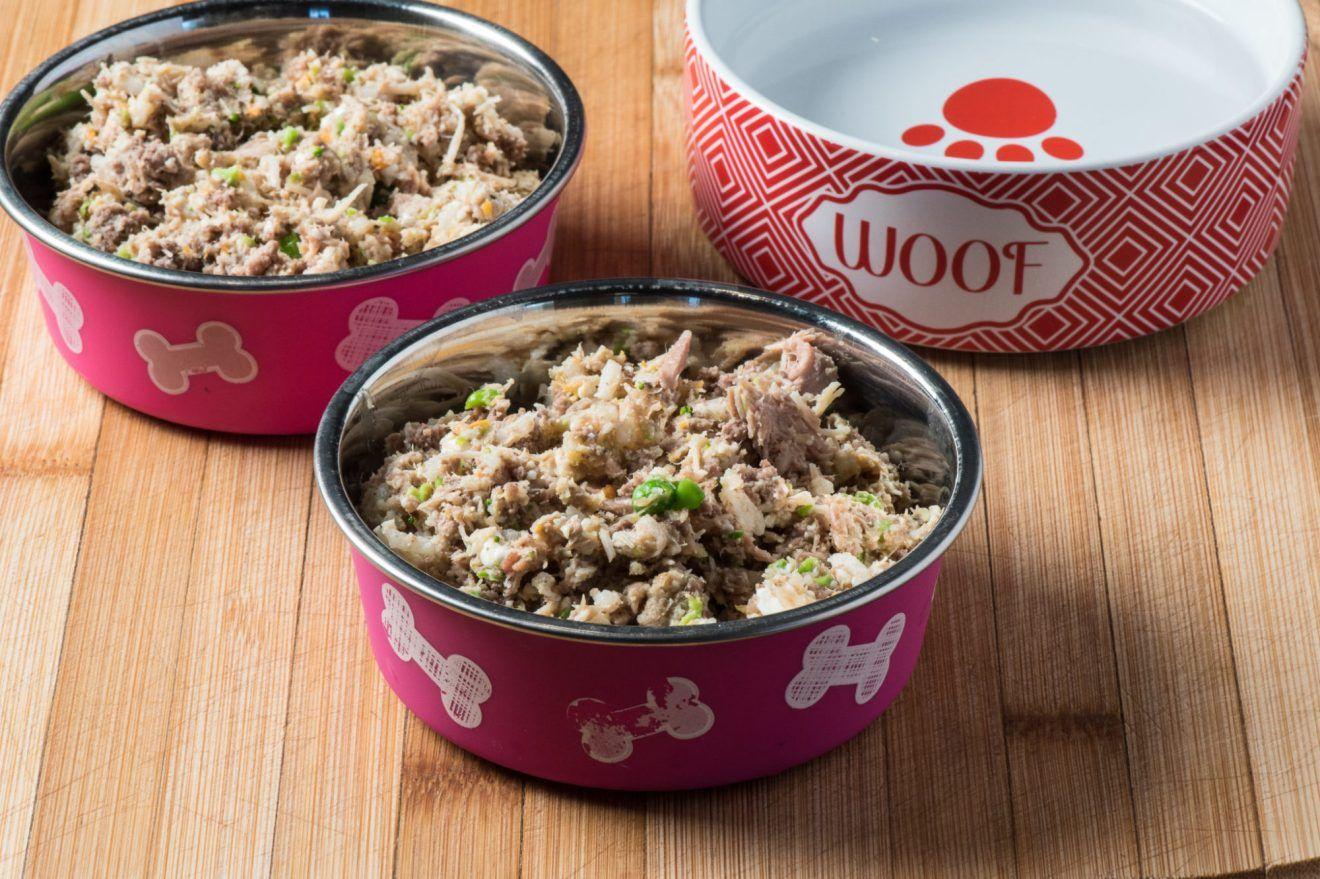 Healthy Homemade Dog Food Recipe Dog Food Recipes Homemade