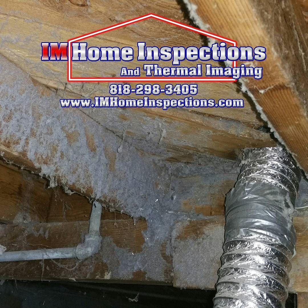 A dryer vent leaking lint into the crawlspace creates a
