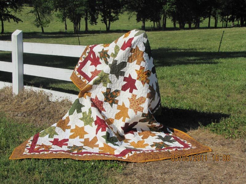 Gallery | Quilt Lizzy  http://www.quiltlizzy.com/