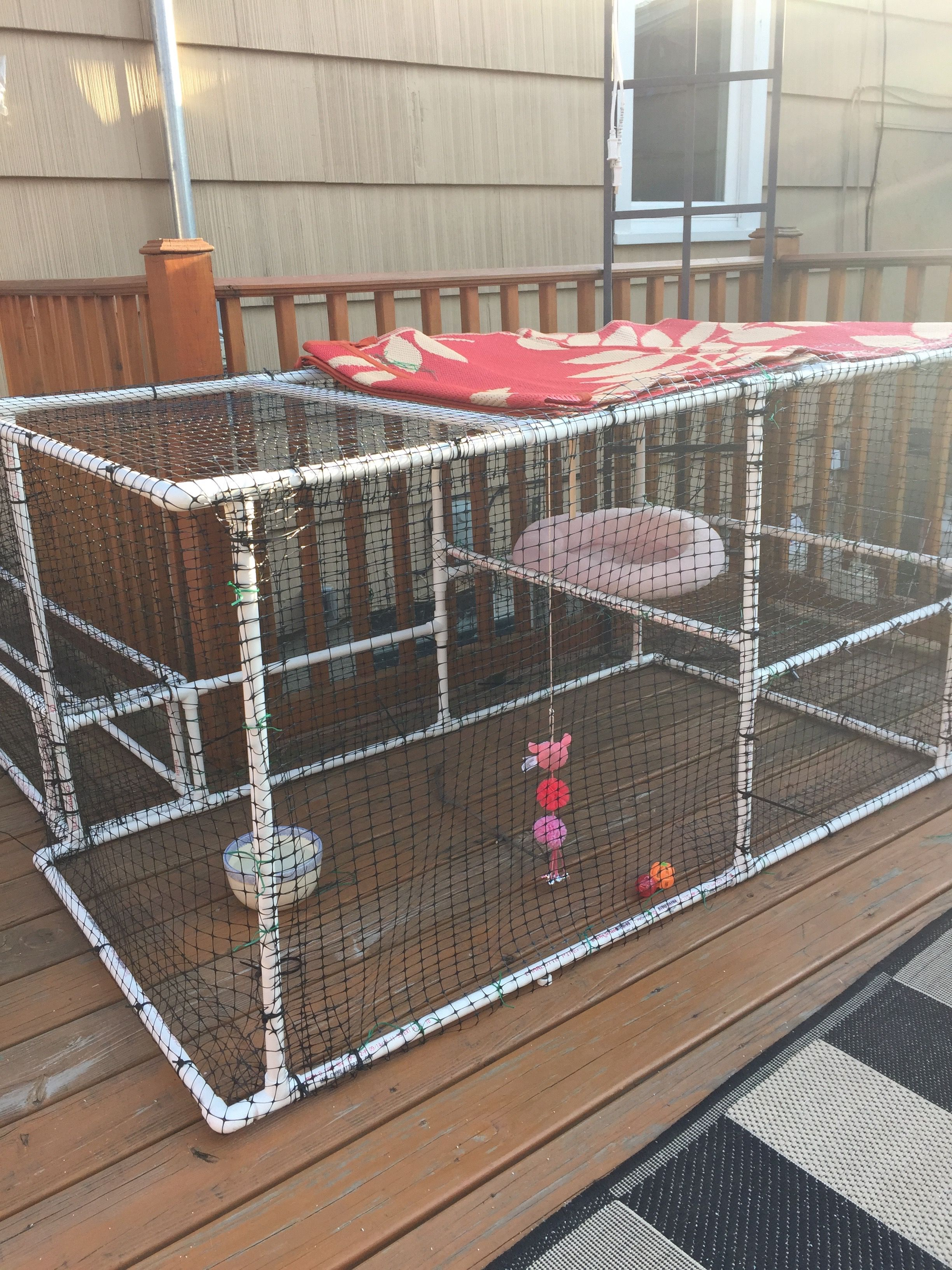Catio I Made Out Of Pvc Piping Mesh Netting And Zip