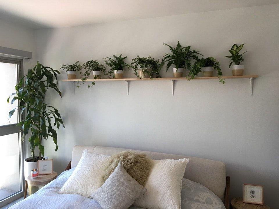 where men can live  feng shui bedroom colors feng shui