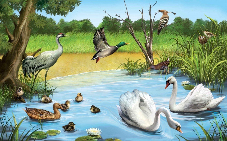 Картинки о природе и животных для детей