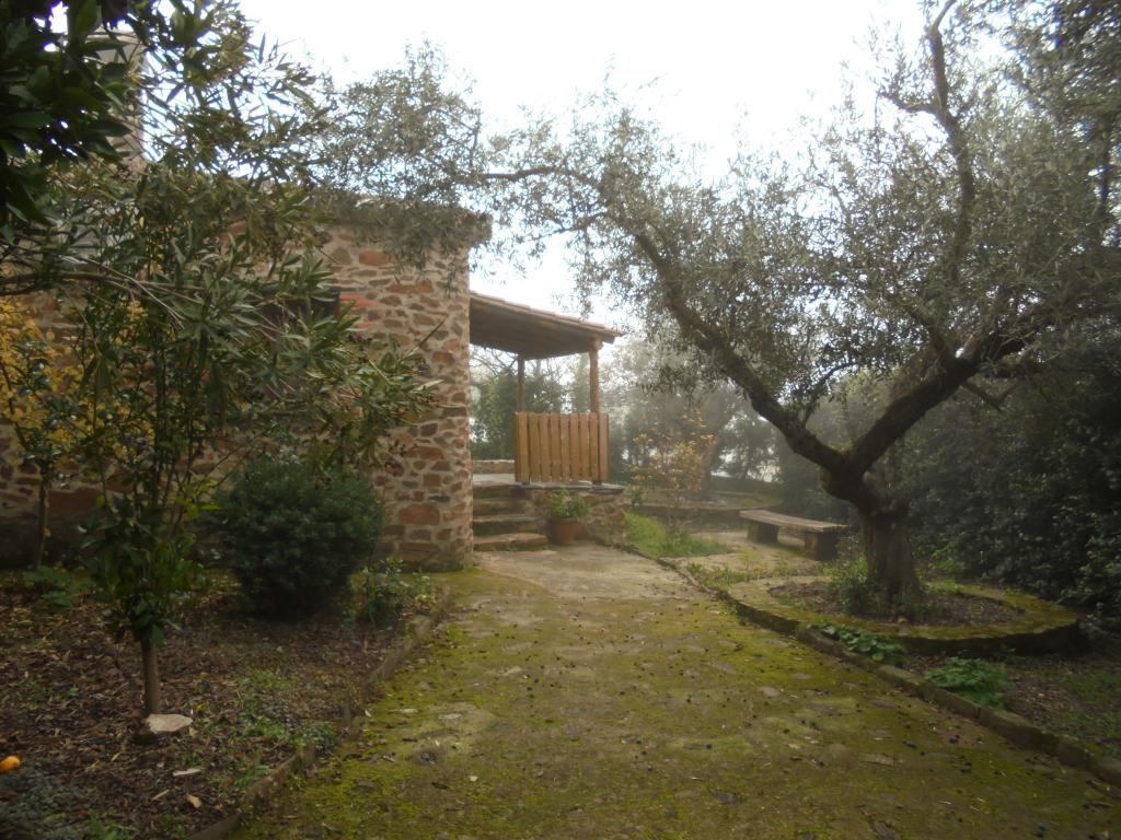 La belleza de la niebla en la Raya/Raia #Tajointernacional @jiniebro #Casitaolivo #TurismoExtremadura #Extremadura