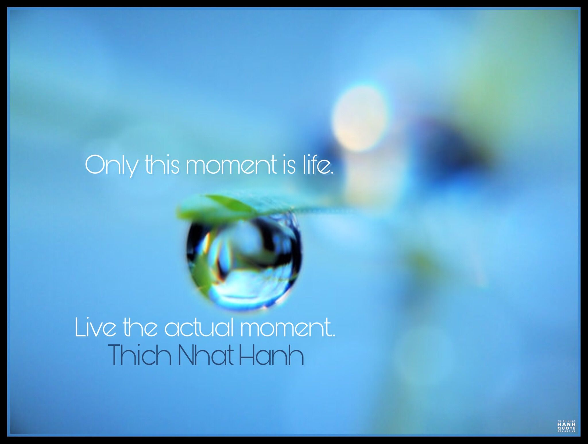 Only this moment is life. Live the actual moment. - Thich Nhat Hanh.  @thichnhathanhquotecollective #thay… | Thich nhat hanh, Buddhist quotes,  Thich nhat hanh quotes
