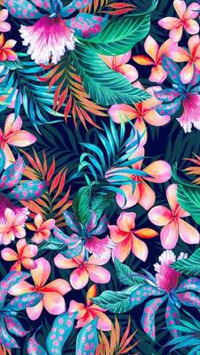 Celular Wallpaper Tumblr
