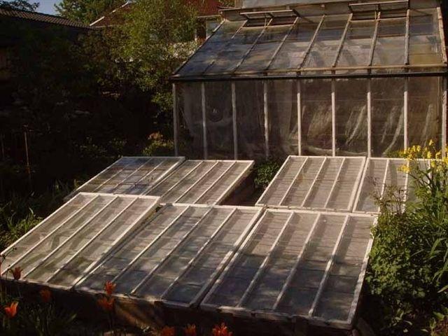 Driv- och förökningsbänkar tycker jag ska vara en del av trädgårdens inredning. Inte bara praktiska. Bänkgård och växthus med inspiration från 1900-talets början passar till ett 30-talshus. Förökningsbänkens förebild går att hitta i engelska trädgårdar från tidigt 1900-tal. De fanns som hel- eller halvbänk och användes ofta för att driva större utplanteringsväxter.