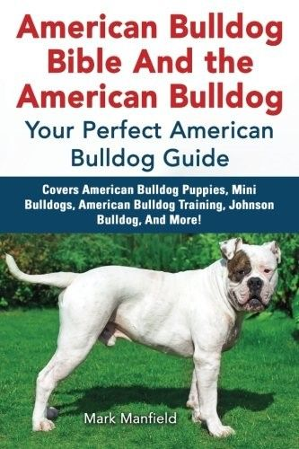 American Bulldog Bible And The American Bulldog Your Perfect