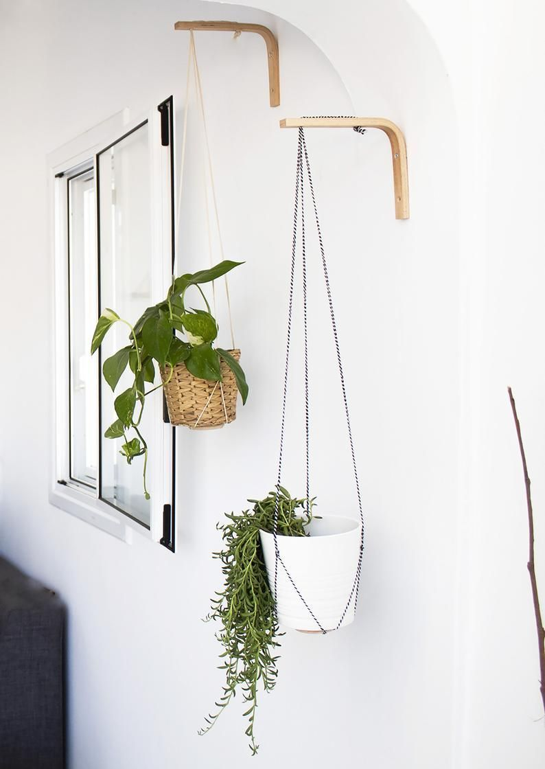 Photo of Wall Hook For Hanging Plants Wood Plant Hanger Indoor Or Outdoor Wall Plant Holder Plants Hooks