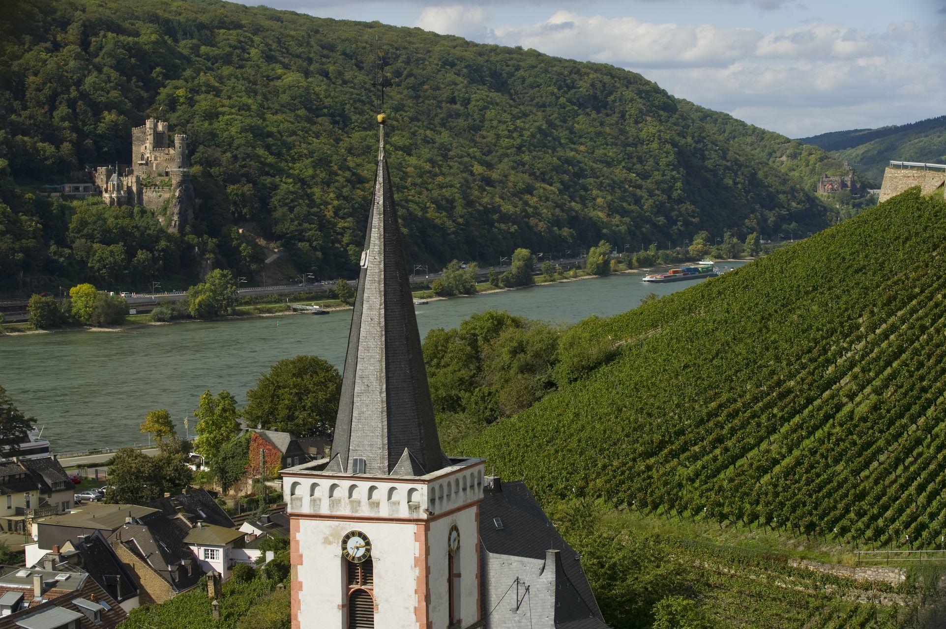 Rudesheim Am Rhein Rudesheim Am Rhein Ausflug Rheine