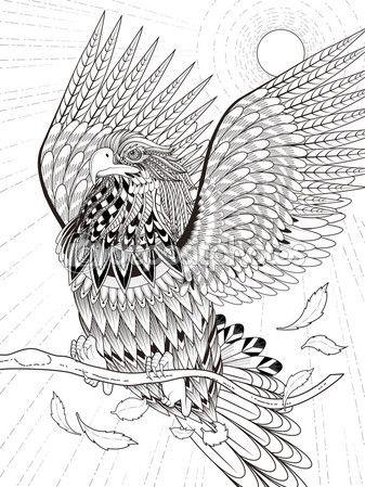 Página para colorear de águila del vuelo — Ilustración de stock ...
