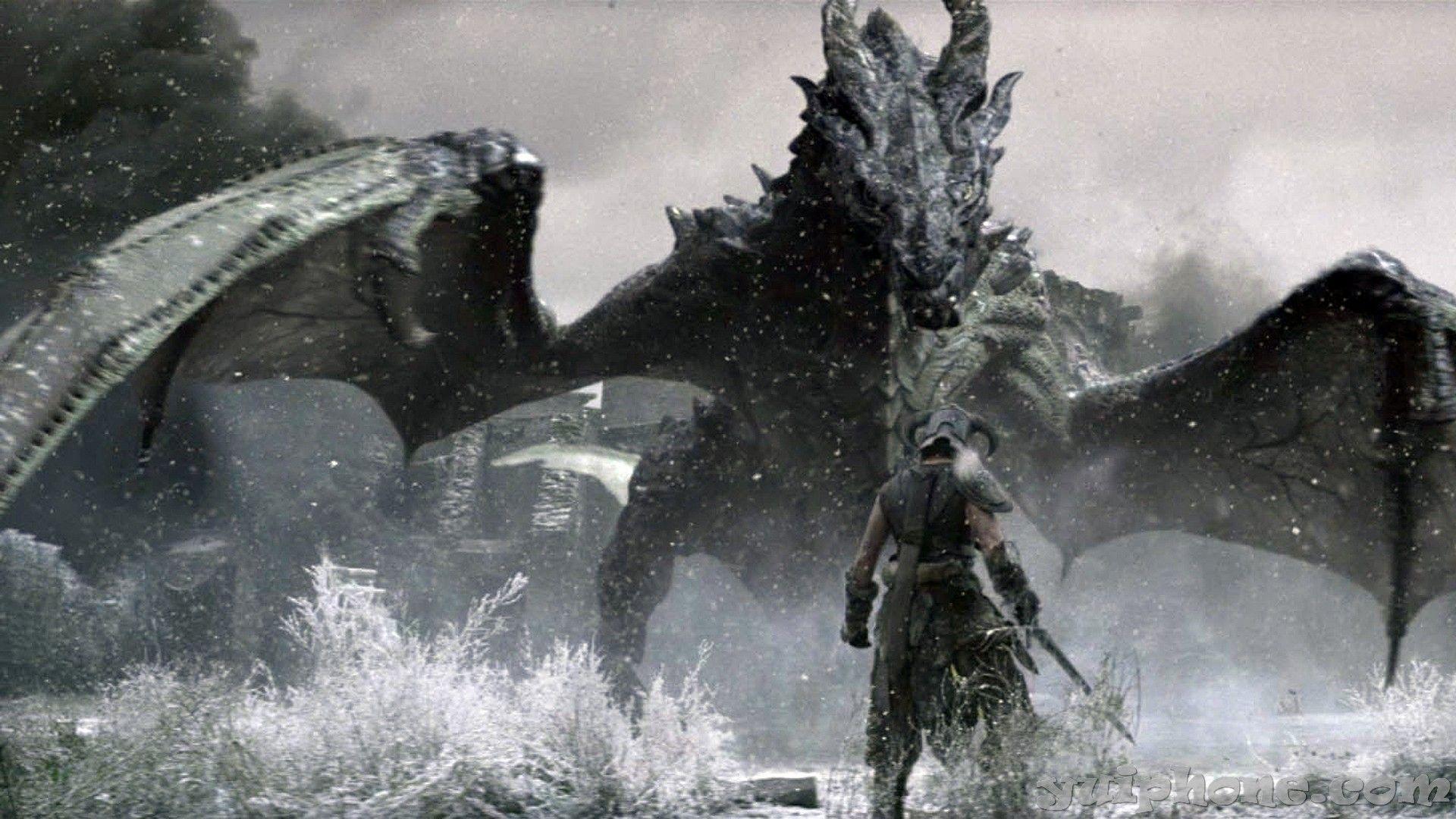 Pin By Sonny Lund On Skyrim Elder Scrolls Skyrim Dragon Dragon