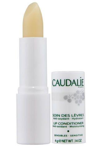 Charting Our Favorite Drugstore Lip Balms Best Lip Balm Lip