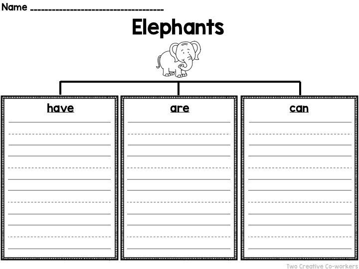 Informational Writing Animals { Elephants } Informational - animal report template example