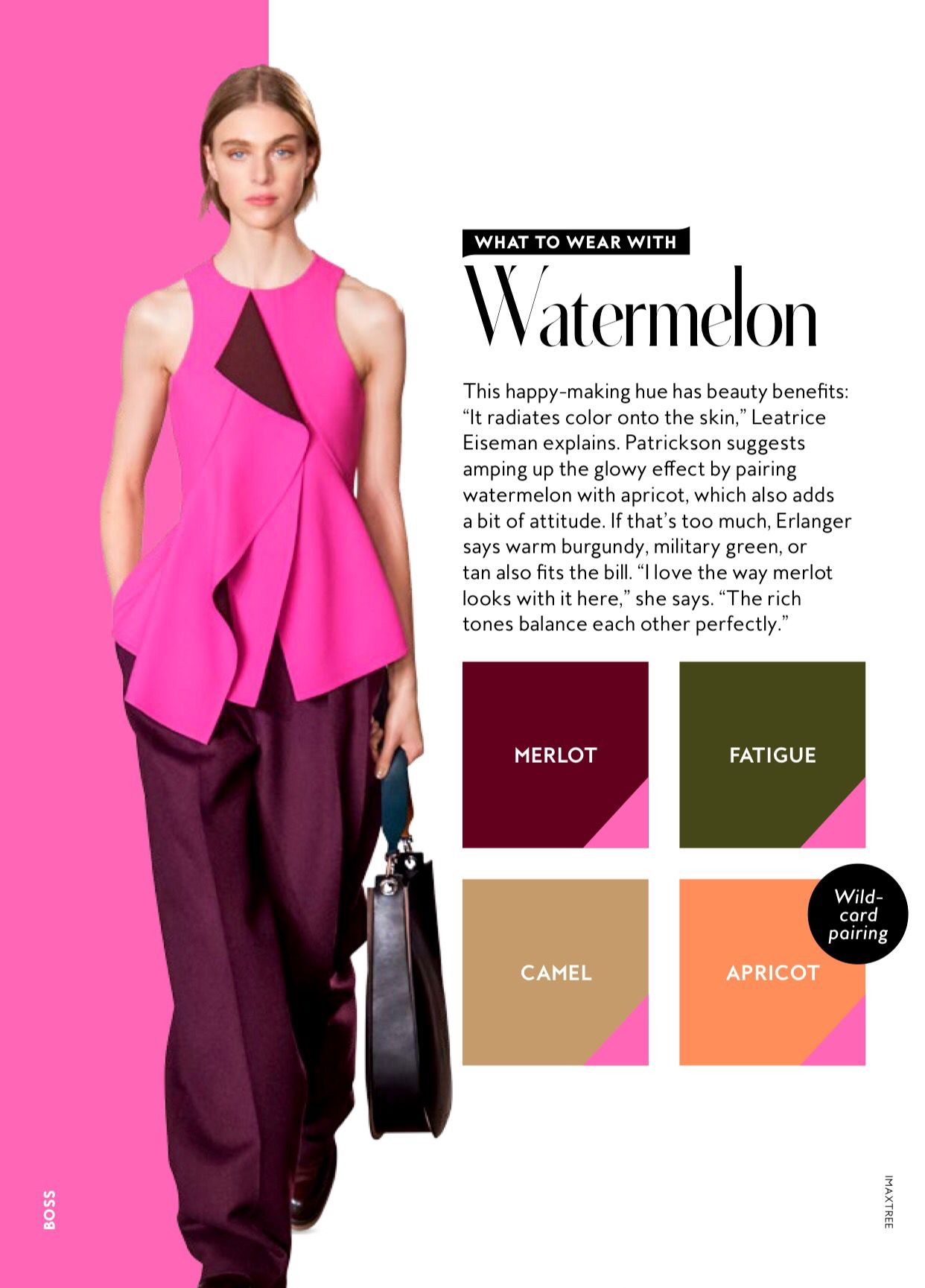 Fw 2016 Colorology