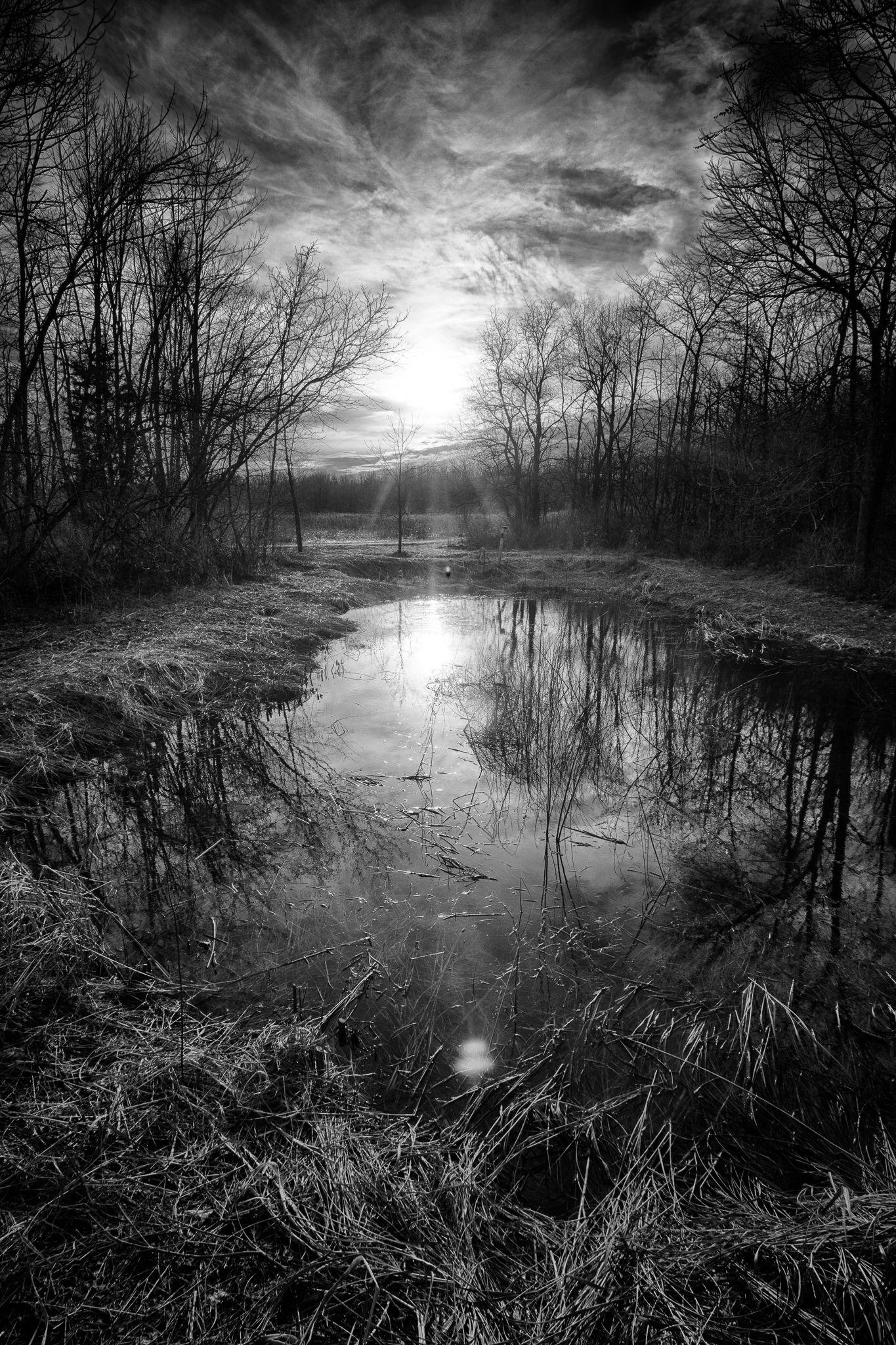 Tranquility Black And White Landscape Landscape Photographers Landscape