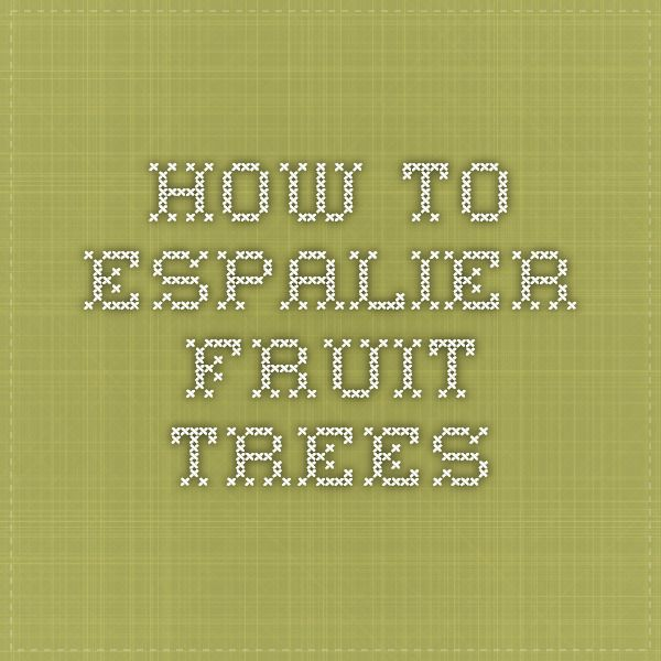 How To Espalier Fruit Trees Gardening Pinterest Espalier Fruit