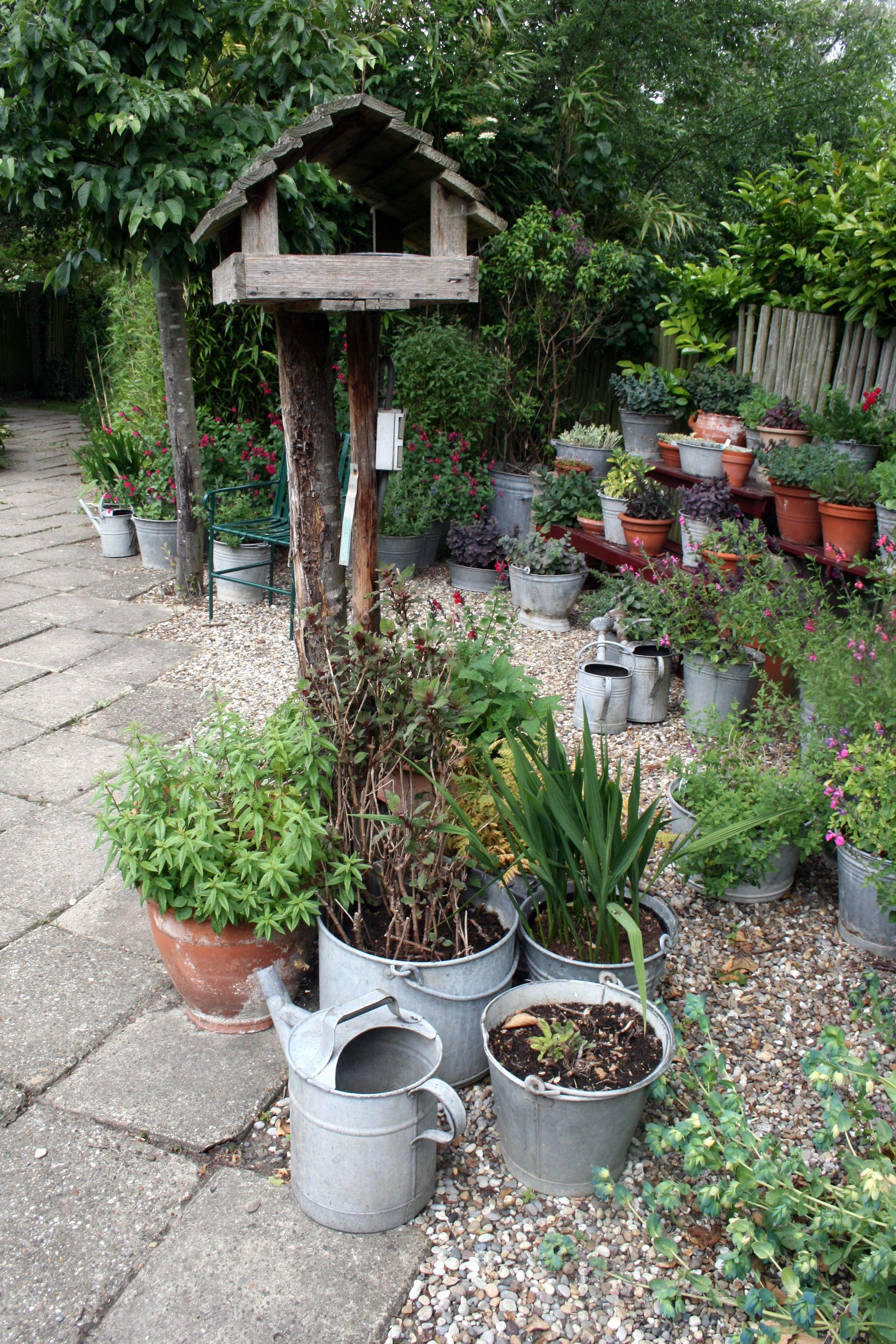 kleines topfgarten mit stil groß bild und fecdedeeae