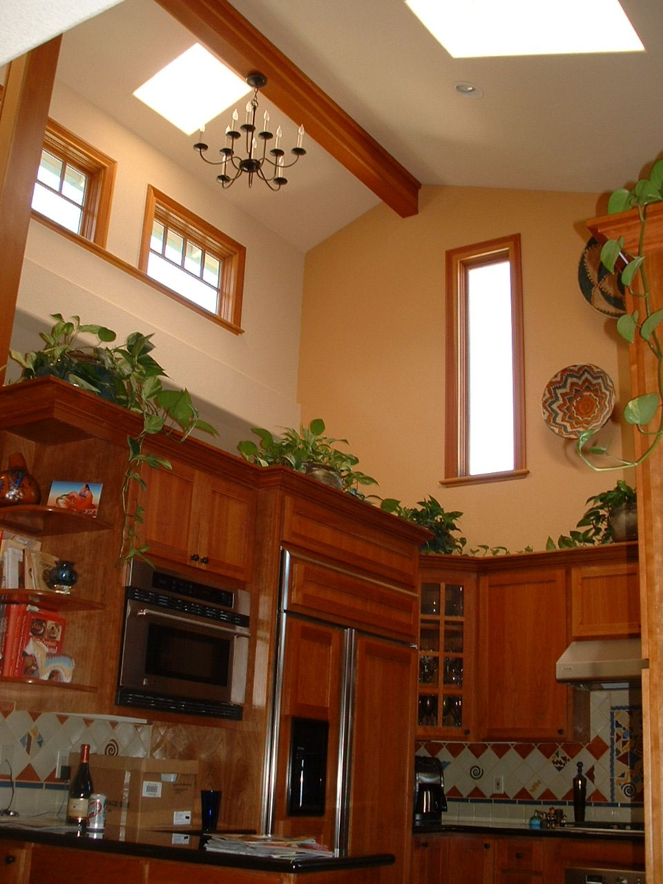 High ceiling with decorative plants decorating for Kitchen decoration designs