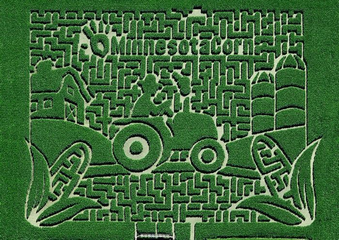Get Lost In These 21 Awesome Corn Mazes In Minnesota This Fall Corn Maze Maze Maze Design