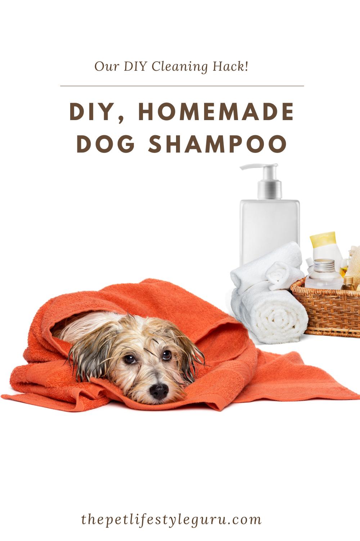 Pin On The Pet Lifestyle Guru Blog