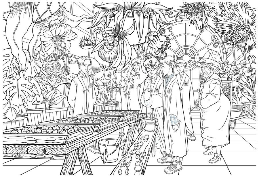 Harry Potter Herbology Class By Irishmanreynolds On Deviantart Harry Potter Coloring Pages Harry Potter Colors Harry Potter Drawings