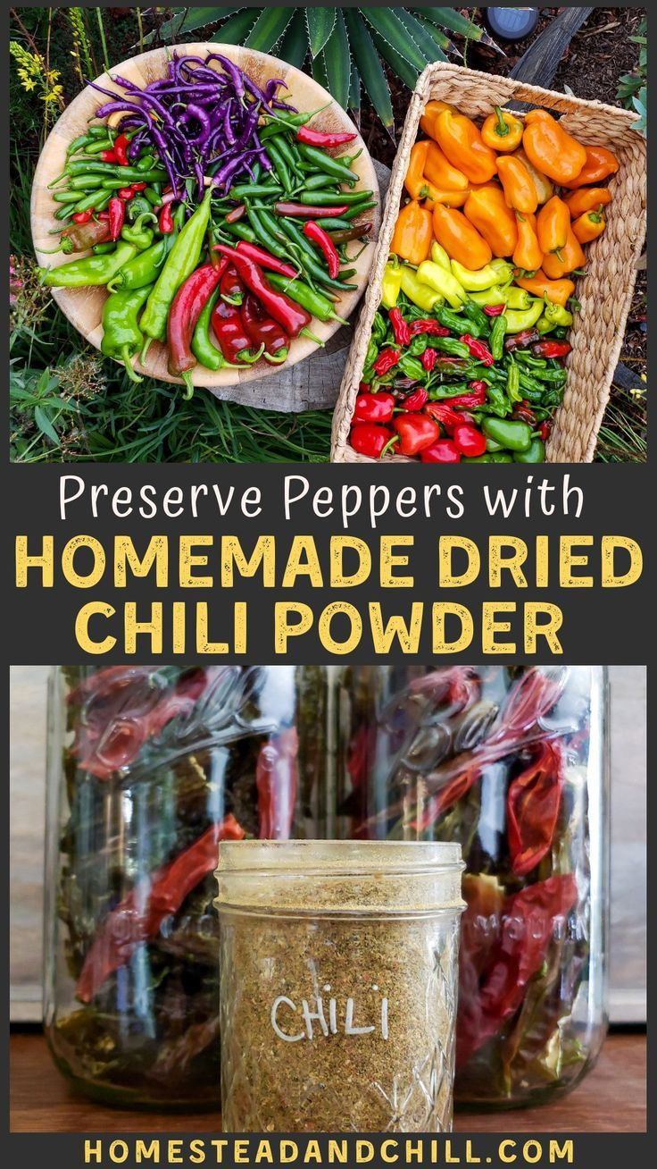How to Make Homemade Chili Powder in 4 Simple Steps (Dried