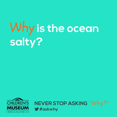 BLOG] Why is the ocean salty? | The Children's Museum of ...