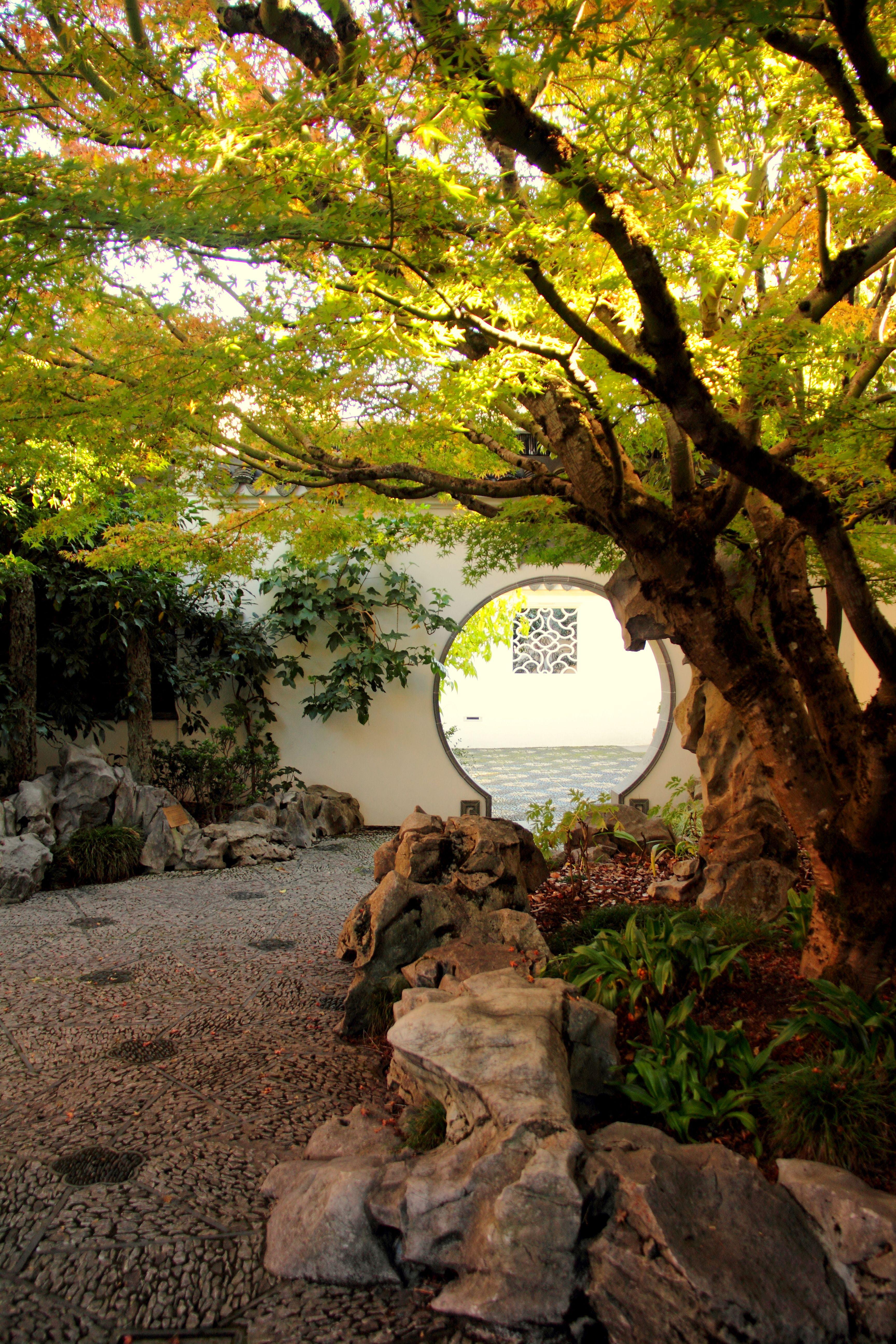 Courtyard near Scholars Study.   Lan Su Chinese Garden   Pinterest ...