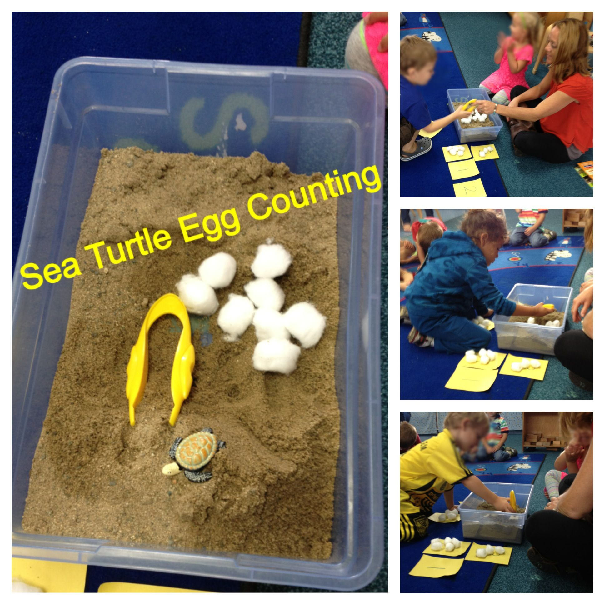 Preschool Ocean Theme Math Sea Turtle Egg Counting Activity Tub Filled With Sand Cotton Ball