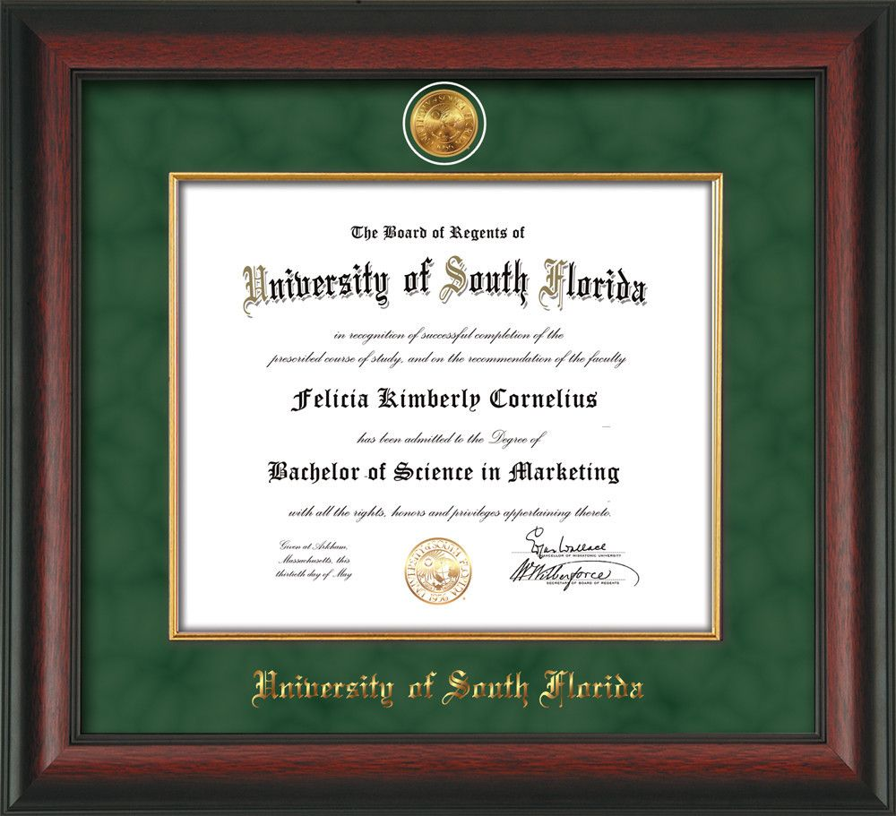 University of South Florida Diploma Frame - Rosewood - w/24k Gold ...