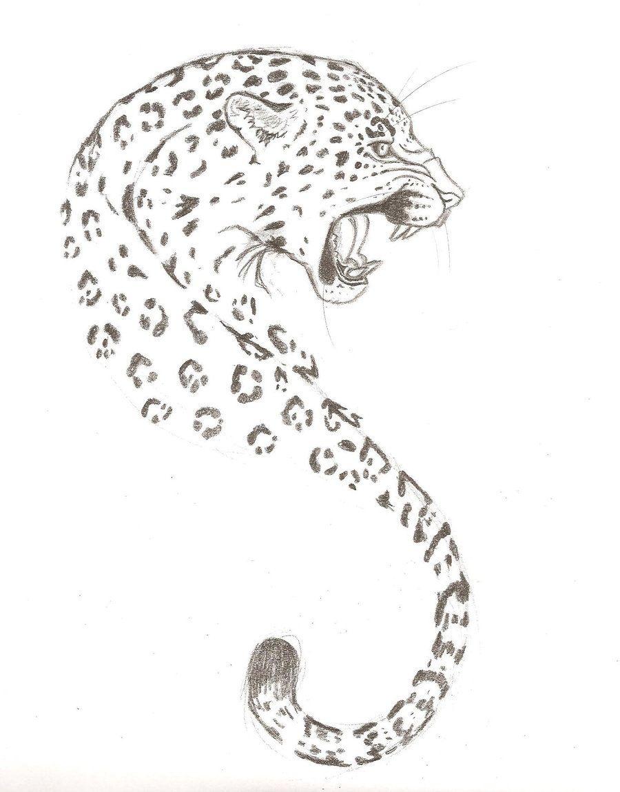 Line Drawing Jaguar : Leopard tattoo love this drawing tattoos pinterest