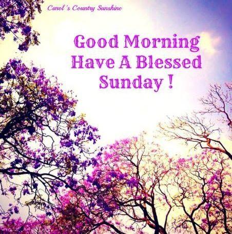 Good Morning On Sunday Via Carols Country Sunshine On Facebook