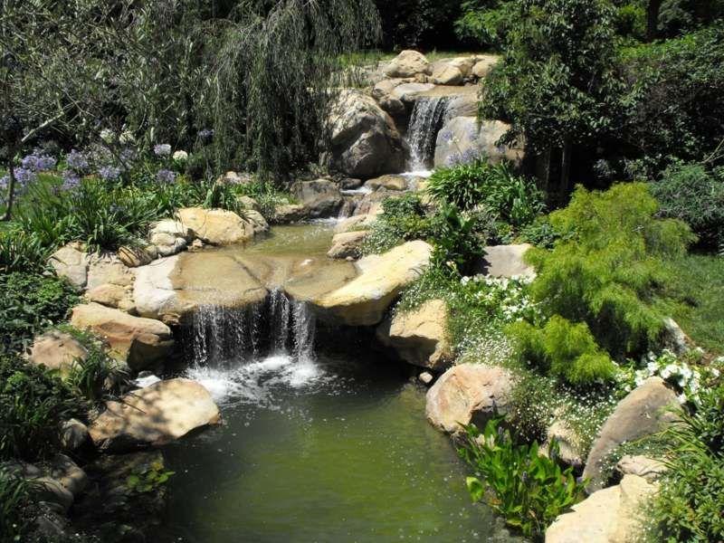 Bachlauf umgeben von lauschigen Pflanzen Bachlauf im Garten - naturlicher bachlauf garten