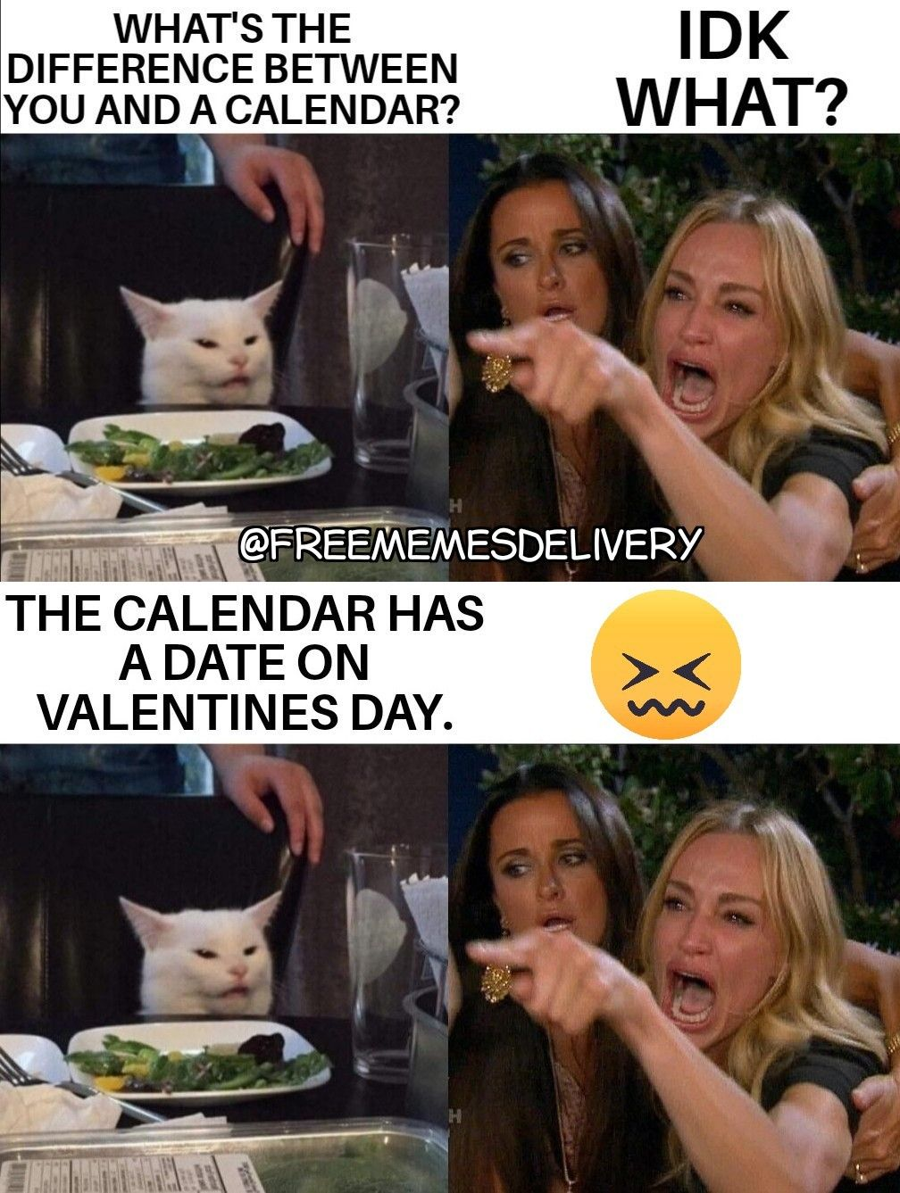 Pin By Jodi Ann Williams On Two Women Yelling At A Cat Meme 2020 Funny Posters Funny Video Memes Funny Animal Quotes