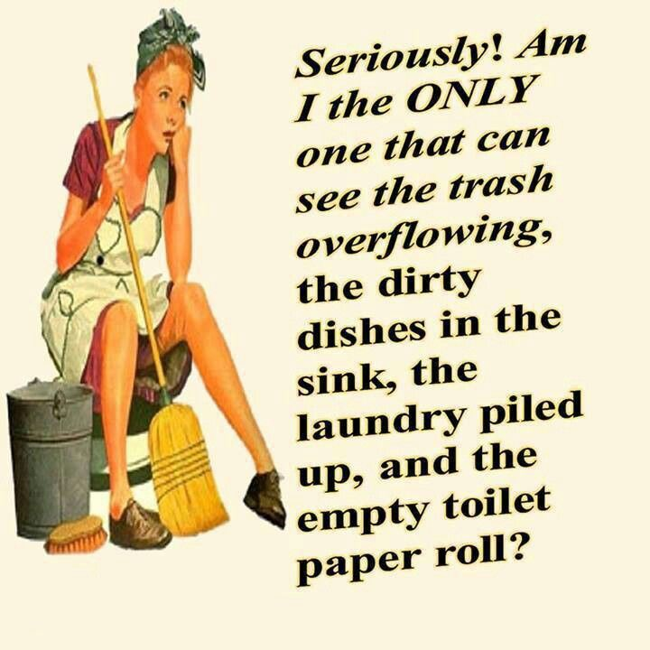 Pin By Beth Smith On Around The House Cleaning Quotes Funny Cleaning Quotes Funny Quotes