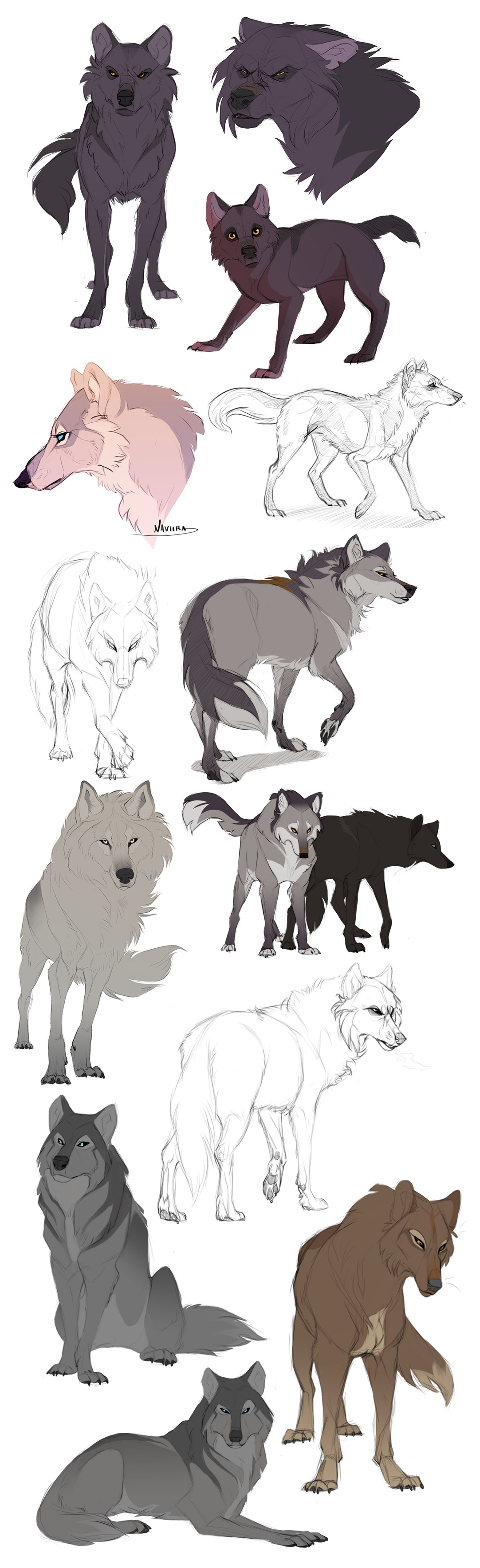 Pin by Eto Bune Pinskacinad on Drawing References | Pinterest | Wolf ...